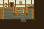 FFV Carwen Item Shop