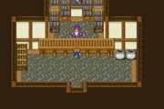FFV Carwen Magic Shop