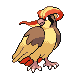Pidgeot DP