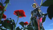 Firion and the Wild Rose