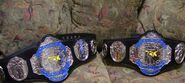 FCW Tag Team Championship