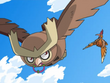 EP587 Noctowl vs Fearow