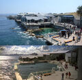 Monterey Bay Aquarium.jpg