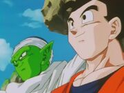 Gohan piccolo 5