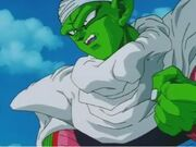 Piccolo1