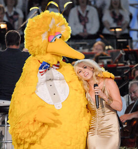 NatashaBedingfieldandbigbird