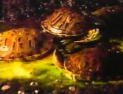 Christmas turtles