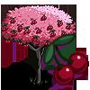 Cherry tree-icon