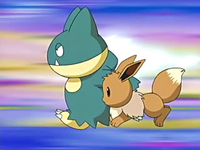 EP458 Munchlax y Eevee atacando