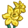 Daffodil-icon