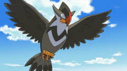 EP625 Staraptor de Ash