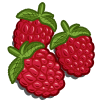 Raspberry-icon