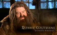 Robbie Coltrane (Rubeus Hagrid) HP6 screenshot