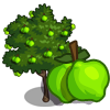 Lime Tree-icon