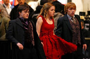 Deathly hallows the trio2