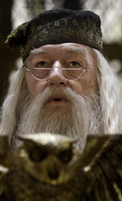 ProfessorDumbledorekps