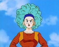 Bulma6