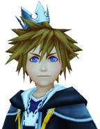 Sora's Crown (Silver)