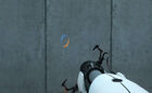 Portal crosshair both colors