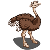 Female Ostrich-icon