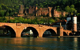 Castle and the Old Bridge, Heidelberg, Germany-3619