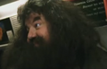 Deleted Scene Hagrid2.PNG