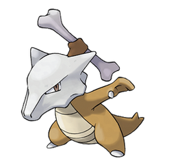 105Marowak