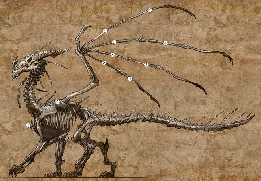 Dragon_Skeleton.png