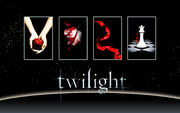 Twilight Saga