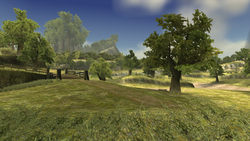 Hyrule Field (Twilight Princess)