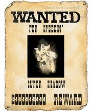 Wantedposter