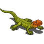 Caiman Lizard-icon