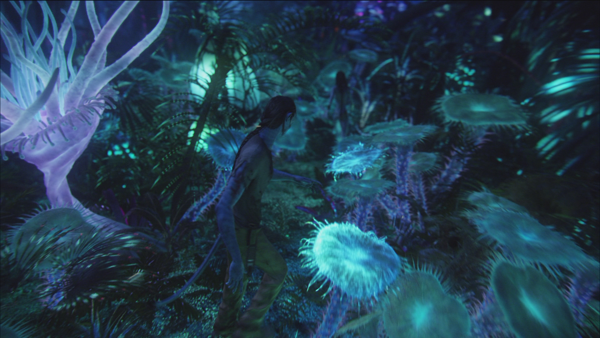 Bioluminescence - James Cameron's Avatar Wiki - Sam ...
