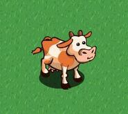 Offcial image of fan cow