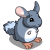 Chinchilla-icon.png