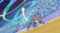 Pokemons contestes (o grande festival) 200px-EP646_Combinaci%C3%B3n_de_Glameow_y_Gallade