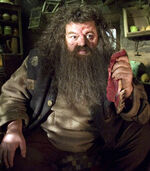 Rubeus Hagrid OOTP