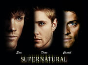 Supernatural-supernatural-6621813-1024-763