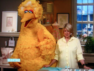 Marthastewart-bigbird