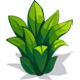 Chinese Fern-icon.png
