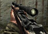 Scoped Springfield WAW