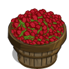 Raspberries Bushel-icon