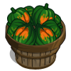 Acorn Squash Bushel-icon