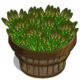 Asparagus Bushel-icon