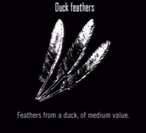 Animals Duck Feathers