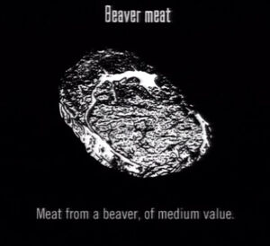 Animals Beaver Meat