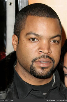 IceCube