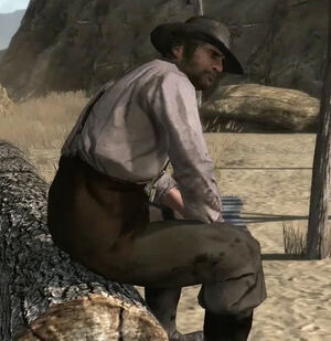 http://images1.wikia.nocookie.net/__cb20100615171447/reddeadredemption/images/thumb/6/6b/Rdr_water_honesty.jpg/300px-Rdr_water_honesty.jpg