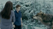 Seth with edward and bella