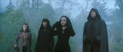 The volturi 65787